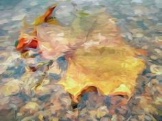 Sycamore Leaf Underwater by Francis Sullivan #wallart #poster #nature #beauty #art #impressionism #autumn #water  Visit 1-francis-sullivan.pixels.com for more #art #photography #homedecor items. Images available on canvas, metal, acrylic, wood, bags, mugs, shirts, phone cases, pillows, notebooks and more.