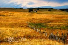 French Landscape : Aubrac plateau in summer, Massif Central, Nord Aveyron, France
