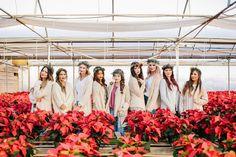 Holiday Greenhouse photoshoot