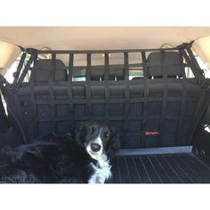 Dog Mesh Dog Guard Smart Fortwo 450 Coupe Separating Boot
