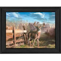 Fans of the great outdoors will adore the Tangletown Fine Art Back Forty Buck Canvas Wall Art . The rustic scene places a prize-winning buck in a country. Wildlife Paintings, Wildlife Art, Whitetail Deer Pictures, Deer Pics, Hunting Art, Deer Hunting, Hunting Stuff, Deer Art, Outdoor Art