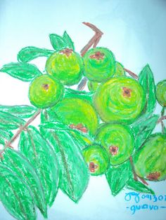 Still Life Using Oil Pastel