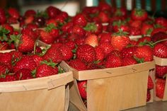Mmmm, strawberries! Agriculture, Strawberries, Friday, Fruit, Strawberry Fruit, Strawberry