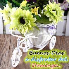 Imagenes de detalles de flores