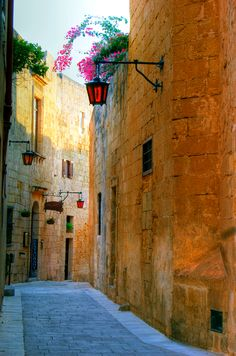 Mdina, Malta Take me back✌️ Memories stay with us forever, even when you can't find them, they are still there