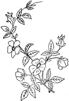 This came from embroiderists photo stream. This image came from Embroiderist's JF Ingalls set Floral Embroidery Patterns, Vintage Embroidery, Ribbon Embroidery, Embroidered Flowers, Cross Stitch Embroidery, Embroidery Designs, Free Adult Coloring, Printable Designs, Printables