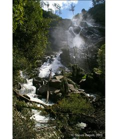 St Columba Falls, Tasmania  and just down the road is the cheese farm. A good day out.