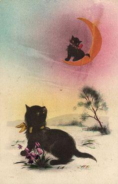 Angora Cat Morris Hirshfield Karte Postcard Art