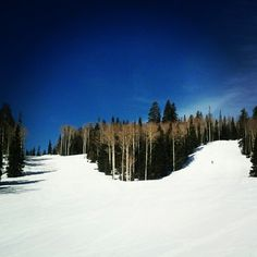 Somebody take me back. #eaglepoint#resort#utah#skiing#bluebird#sunny#skihill#ski#winter