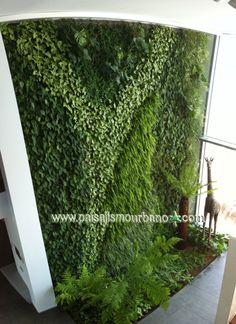 Fachada Verde Realizada Por Paisajismo Urbano En Una Villa De Lujo En  Ibiza. Eivissa IbizaLiving WallsVertical ...