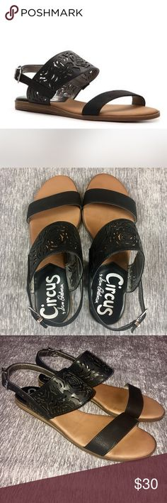 NWOT Circus Sam Edelman Black Leather Flat Sandals Circus by Sam Edelman black leather sandals. Brand new never worn! Buckle ankle strap and black rose Floral perforated leather. Size 6.5. Perfect for spring coming up, very classic style. Circus by Sam Edelman Shoes Sandals