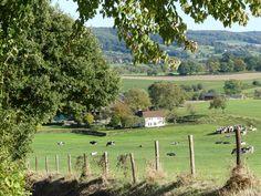 View from Herresweg * Close to Epen * Zuid-Limburg