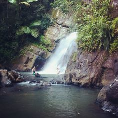 El Yunque (: <3 I was terrified of slipping on the rocks but it was a lot of fun.