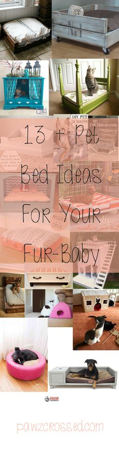 Check out these cute diy pet beds for your belovedd dogs and cats. Even you rabbits! I love the tire bed and might have to try it myself! Links to original how-to posts in in this post itself! Check them out and let me know what you made! Love seeing finished projects.