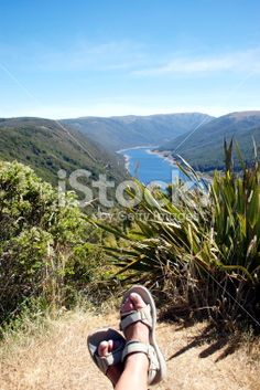Resting in the Cobb Valley, Kahurangi National Park, New Zealand Royalty Free Stock Photo New Zealand Landscape, New Zealand Travel, Travel And Tourism, Tasmania, Image Now, Wilderness, National Parks, Landscapes, Scenery