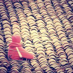 #myinstagram365proyect día059 un hombre entre #tejas #tejado #aguilardecampoo #palencia #igerscyl #igerspalencia