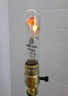 From the 1930s to the 70s, Aerolux Light Corporation sold novelty lightbulbs with sculptural floral filaments. While now only found on Ebay for 100s o...