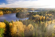 View top-quality stock photos of Forest With Lake In Autumn On Foggy Day Finland. Find premium, high-resolution stock photography at Getty Images. Lappland, Forest Drawing, Castles To Visit, Glass Museum, Autumn Scenery, Nature Water, Home Pictures, Lake District, Looks Cool