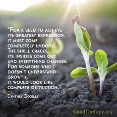 For a seed to achieve its greatest expression, it must come completely undone...