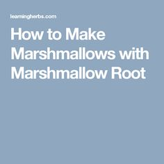 How to Make Marshmallows with Marshmallow Root