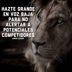 Pero hazte GRANDE  @ | motivación empr