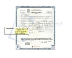 Oakland county state of michigan birth certificate signed by yvette state of michigan birth certificate signed by glenn copeland state registrar solutioingenieria Images