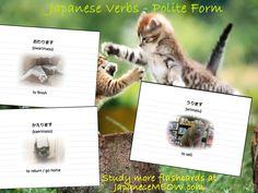 Japanese verbs - Owarimasu, Kaerimasu and urimasu.  Study more flashcards at JapaneseMEOW.com
