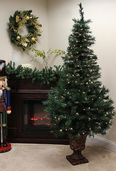 5' Pre-Lit Potted Shimmering Royal Fir Artificial Christmas Tree - Clear Lights 23158130 | ChristmasCentral