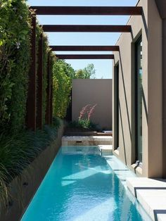 A swimming pool is one of the favorite places to refresh our mind. It is no wonder that people will seek the resort with modern and luxurious swimming pool to spend their vacation. A nice swimming pool design will require . Swimming Pool Landscaping, Small Swimming Pools, Small Pools, Swimming Pool Designs, Lap Pools, Small Backyard Design, Backyard Pool Designs, Small Backyard Pools, Backyard Ideas