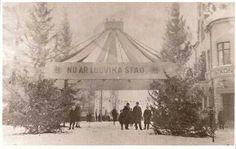 Ludvika blir stad 1919