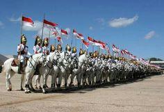 Cavalaria do Brasil