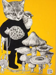 http://higuchiyuko.tumblr.com collecting my shrooms- kitty with morel, misc…