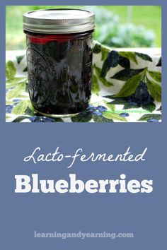 Points You Should Know Prior To Obtaining Bouquets Fermenting Fruit Is A Little More Challenging Than Vegetables. Utilizing Whey And A Short Fermentation Period Are The Key To Lacto-Fermented Blueberries. Fermentation Recipes, Canning Recipes, Wild Edibles, Fermented Foods, Preserving Food, Fruit And Veg, Kefir, Kombucha, Gut Health