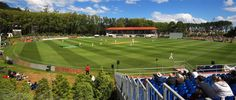 See 6 photos and 1 tip from 36 visitors to University Oval. Hopefully the cricket is. Travel News, Travel Guide, Cricket World Cup, 6 Photos, Four Square, New Zealand, Growing Up, University, Australia