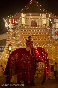Esala Perahera night festival-Kandy (38 of 44) | Flickr - Photo Sharing!