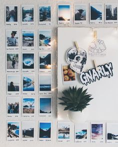Rustic, woodsy-inspired decor for your study space Polaroid Display, Polaroid Wall, Polaroids, Polaroid Camera, Surf Room, Beach Room, Ideas For Room Decoration, Wall Tumblr, My New Room