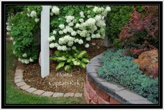 . Stepping Stones, Backyard, Landscape, Garden, Outdoor Decor, Plants, Fun, Home Decor, Stair Risers
