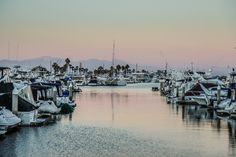 White Boat Lot on Bodies of Water Photo  Free Stock Photo