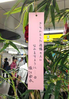tanabata sama