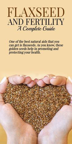 Flaxseed And Fertility- A Complete Guide