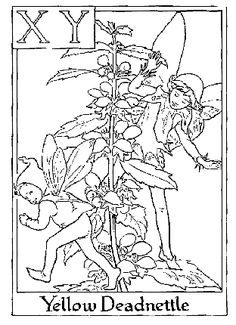 coloring pages for kids, coloring pages, flower fairy