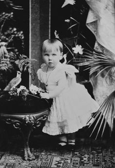 Princess Beatrice of Edinburgh, 1885 [in Portraits of Royal Children Vol.34 1885-1886] | Royal Collection Trust