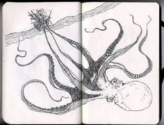 Image result for octopus attacking ship