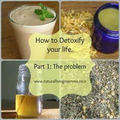 How to Detoxify Your Life: Part 1 The Problem - Natural Living Mamma  Do you have health issues you can't resolve? Do you live the modern american lifestyle? Are you surrounded by toxins that you don't know about? Find out more and follow this great series about how to detoxify your life!