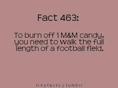 Fact 463