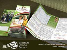 Brochure Design - Inspiration, Samples, Examples, Templates, Sizes - http://www.brochuredesignservice.com/Brochure-Design-T2718.html