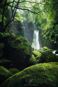 """The luscious Grotto"" - Azores"