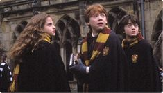 """""""Follow the spiders? Why couldn't it have been follow the butterflies?"""" - Ron Weasley"""