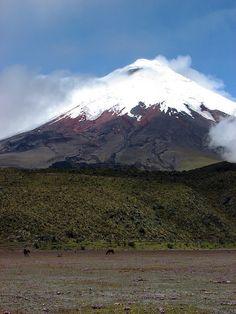 Ambato, Galapagos, Quito, Banos, Cuenca, Guayaquil, Otavalo, Salinas, Chordeleg, Guaranda, Ecuador