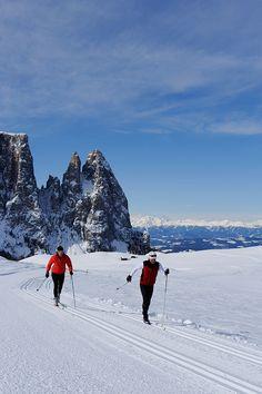 Die besten Ski-Destinationen in der Schweiz, Österreich, Frankreich, USA und Kanada haben wir in demArtikel Top 10 Skigebiete weltweit versammelt.Doch wollen wir Italien nicht ganz außer Acht lassen. In den Dolomiten istdie Seiser Alm das perfekte Reiseziel für den Familienurlaub. ObSkifahren, Langlauf, Rodeln oderWandern – auf der mit 56 Quadratkilometer größten Hochalm Europas eröffnensich zahlreicheFreizeitaktivitäten für Groß und Klein. Die Seiser Alm liegt im Herzen der… Xc Ski, Ski Gear, Nordic Skiing, Ski Jumping, Winter Scenery, Cross Country Skiing, Mount Everest, Scandinavian, Beautiful Places